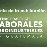 Libro Buenas Prácticas Laborales Agroindustriales